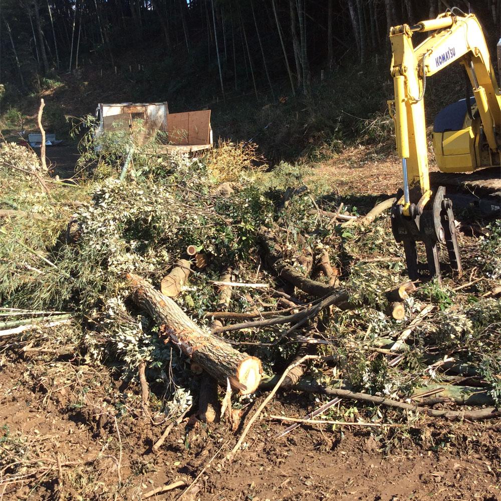 伐採作業①のコピー