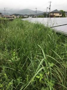 那須塩原市 before (2)