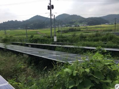 栃木高圧 (2)